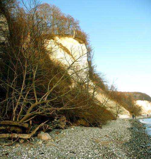 Bild 11. Uferweg unterhalb des Hengstes 2010