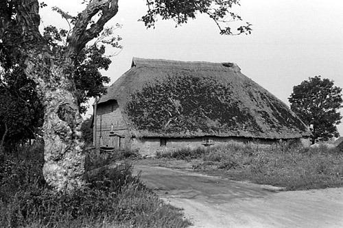 Bild 4. Haus Simonez. August 1978