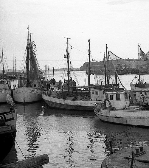 Fischereihafen von Saßnitz im Jahre 1955. Aufnahme: Kurt Leube, Bergen.