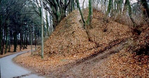 Rugard bei Bergen 1972. Alter slawischer Zugang zum Burgwall an der heute asphaltierten Landstraße nach Buschvitz. Hier verlief einst der Wallgraben.