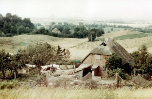 """Altes Bauernhaus in der """"Rugard-Heide"""" am Wege von Bergen nach Buschvitz 1958. Alte Fischernetze dienten als Zaunbegrenzungen. Das Haus wurde wenige Jahre später aufgegeben und existiert nicht mehr."""