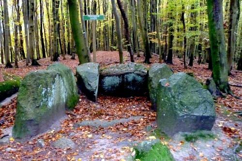 """Großsteingrab des Typs """"Großdolmen"""" Pfennigskasten in der Stubnitz 2009.  Erhalten sind nur noch die Wandsteine. Die Deckplatten fielen den  Steinschlägern zum Opfer."""