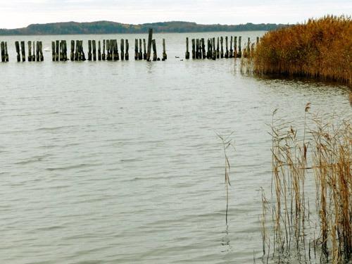 Bild 12. Polchower Hafen mit Rohr 2009