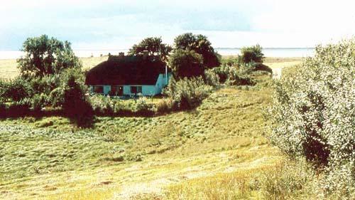 Bild 14. Alt Reddevitz. Bauernhaus an der Having. 1987