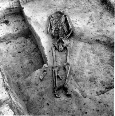 Abb. 8. Gustow. Körpergrab. 1966