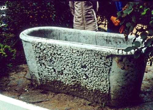 Abb. 4. Goor. Historische Badewanne. Aufbahme  A. Leube 1988