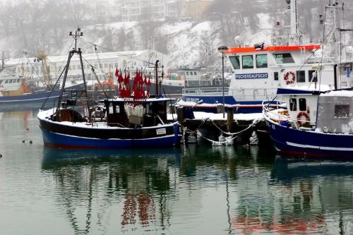 Abb. 4. Sassnitz. Hafengelände im Winter 2010. Aufnahme  A. Leube.