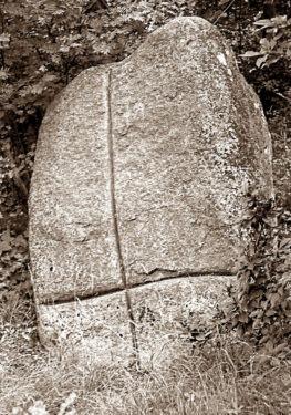 Abb. 2 Dummertevitz.  Großsteingrab Siegesstein im Jahre 1960. Aufnahme  A. Leube